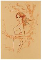 Rayon : Tirages (Aventure-Action), Série : India Dreams T9, Le Regard du Vieux Singe (Tirage de Luxe) (Version Collector)
